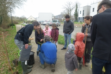 3 mars 2019 - Plantations Thorigné-Fouillard