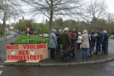 5 avril 2019 - Coquelicots BETTON (35)